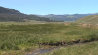 Lamar Valley - Yellowstone National Park video