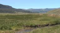 Lamar Valley, Yellowstone video