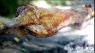Lamb roasting video