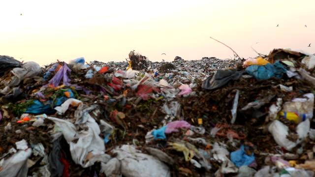 Landfill video