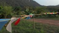 Landscape flags video