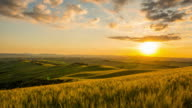 T/L 8K Landscape in the Tuscany region video