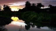 Landscape oasis in sunset video