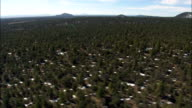 Landscape Of Trees With Scattered Snow  - Aerial View - New Mexico,  Cibola County,  United States video