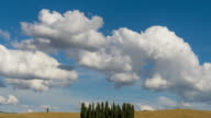 Landscape of Tuscany and cypress tree, Italy video