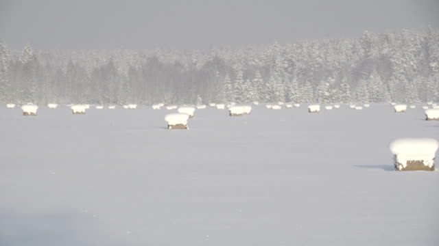 Landscape view of the rural area during snow video
