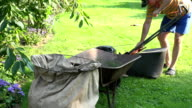 landscaper worker man stop mower and unload grass from lawn cutter bag into barrow. FullHD video