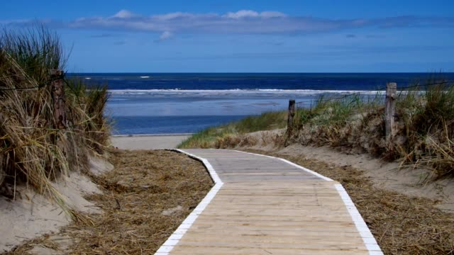 Langeoog dune and track video