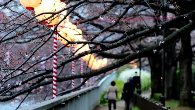 Lanterns in Sakura Festival at walkway Ooyokogawa river , Tokyo, Japan. video