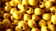 large amount yellow apples video