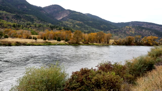 Large and Beautiful Mountain River video