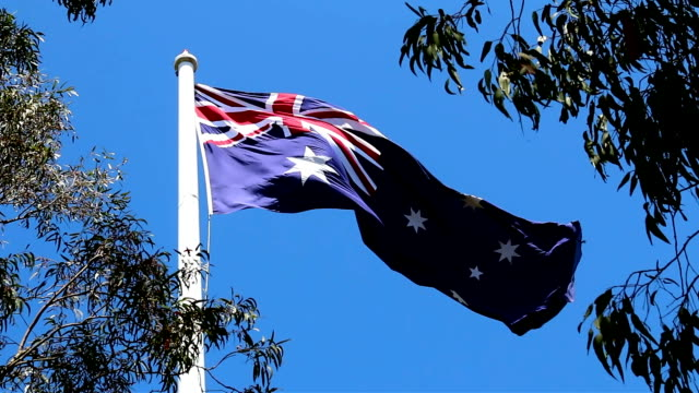 Large Australian Flag Flying in a Low Wind Between Gum Trees video