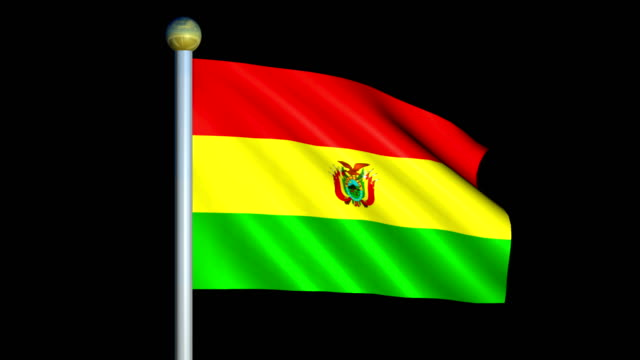 Large Looping Animated Flag of Bolivia video