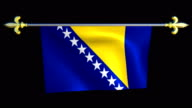 Large Looping Animated Flag of Bosnia and Herzegovina video