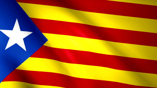 Large Looping Animated Flag of Catalonia video
