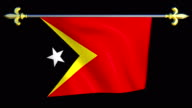 Large Looping Animated Flag of East Timor video