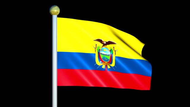 Large Looping Animated Flag of Ecuador video