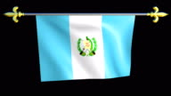 Large Looping Animated Flag of Guatemala video