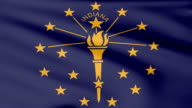 Large Looping Animated Flag of Indiana video