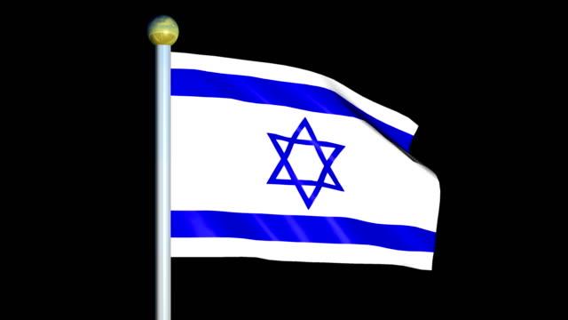 Large Looping Animated Flag of Israel video