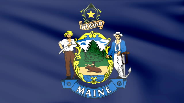 Large Looping Animated Flag of Maine video