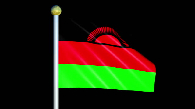 Large Looping Animated Flag of Malawi video