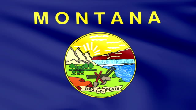 Large Looping Animated Flag of Montana video