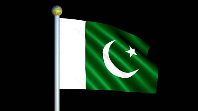 Large Looping Animated Flag of Pakistan video