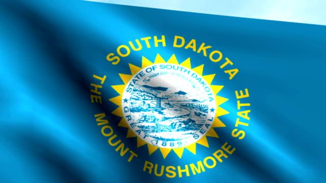 Large Looping Animated Flag of South Dakota video