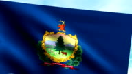 Large Looping Animated Flag of Vermont video