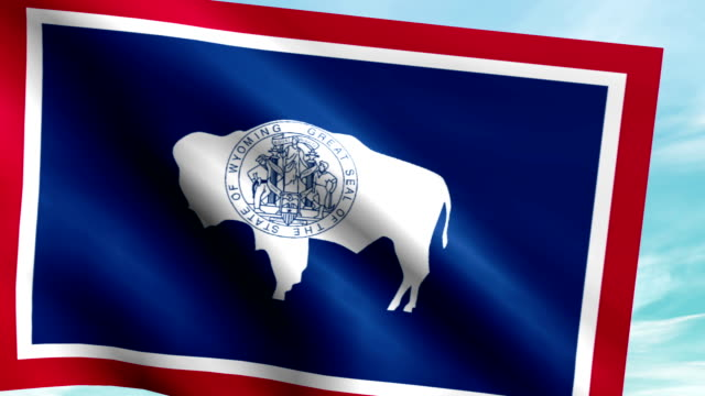 Large Looping Animated Flag of Wyoming video