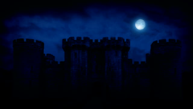 Large Medieval Castle At Night video