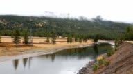 Large Mountain River in Forest video