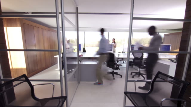 Large office team time lapse people video