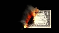 last dollar burning money, HD 1080 video
