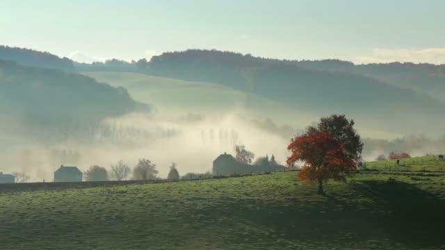 Last morning mist (autumn) video
