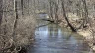Late Winter Creek video
