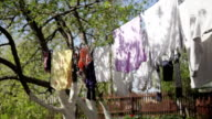 Laundry in the wind video