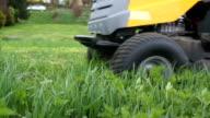 lawn care video