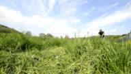 Lawn Mower  HD video