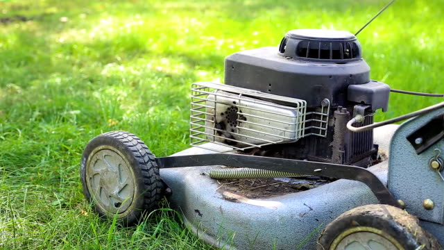 lawn mower stands on the grass video