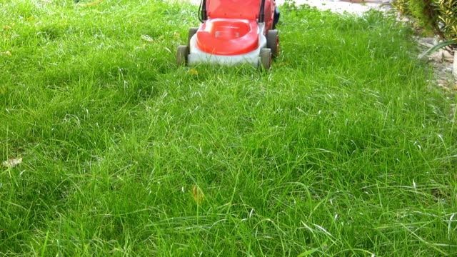 Lawn Mower (HD) video