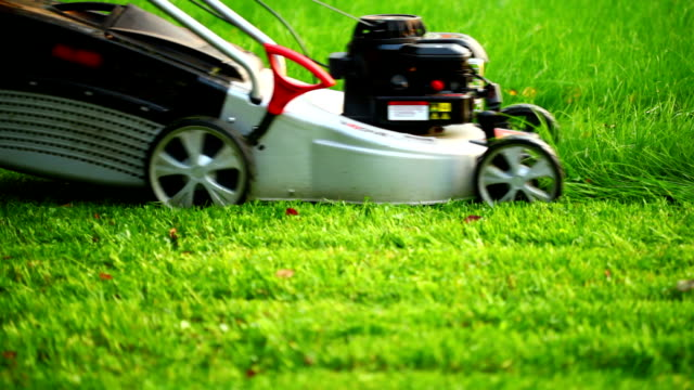 Lawn mower video