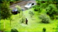 Lawnmower video