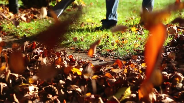 Leaf blower in action video