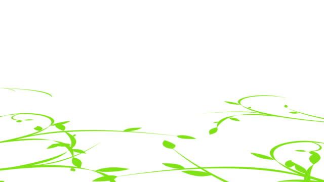 leaf video