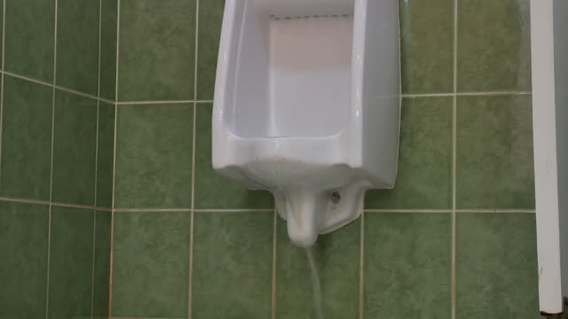 Leak out of Toilet video