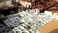 Leather tannery in fez, morocco video