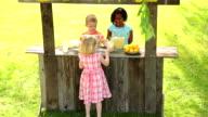 Lemonade stand video