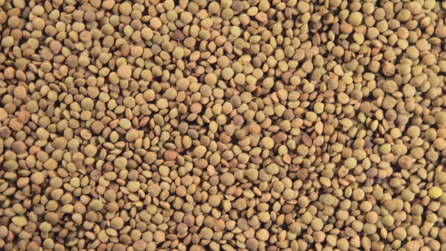 Lentil grains (Rotation) video